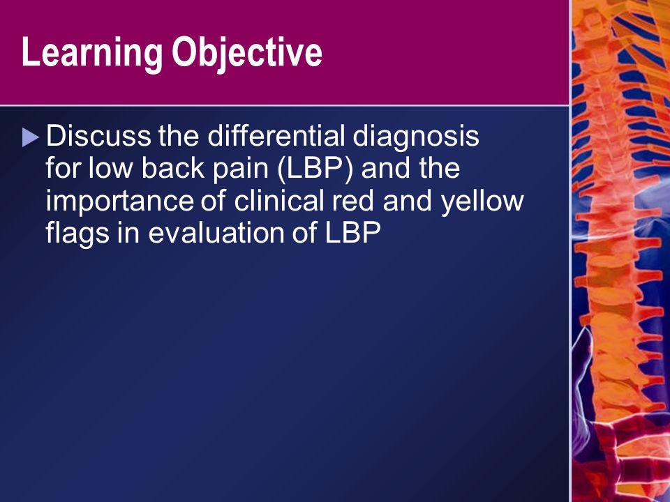 The Fear-Avoidance Model of Chronic Pain Leeuw M, et al.