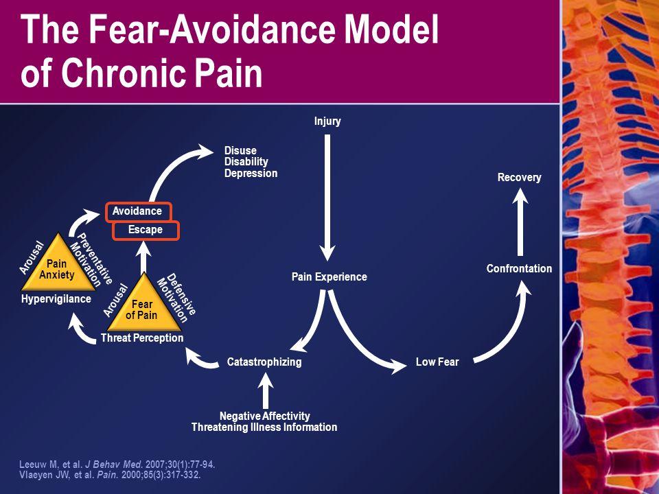 The Fear-Avoidance Model of Chronic Pain Leeuw M, et al. J Behav Med. 2007;30(1):77-94. Vlaeyen JW, et al. Pain. 2000;85(3):317-332. Pain Anxiety Hype