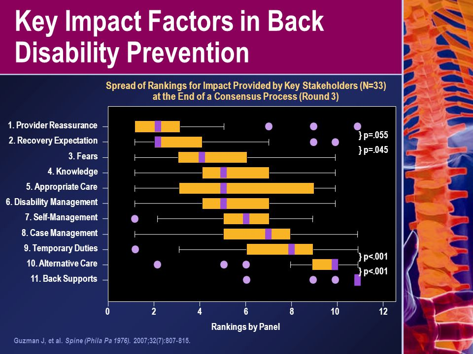 Key Impact Factors in Back Disability Prevention Spread of Rankings for Impact Provided by Key Stakeholders (N=33) at the End of a Consensus Process (