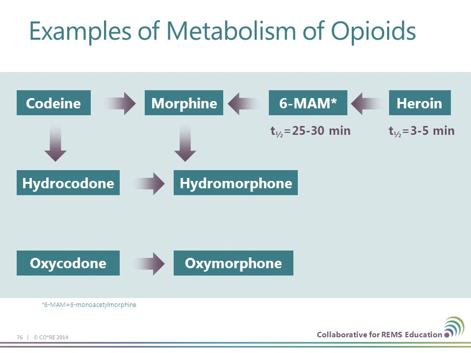 Collaborative for REMS Education Examples of Metabolism of Opioids 76 | © CO*RE 2014 *6-MAM=6-monoacetylmorphine CodeineMorphine6-MAM*Heroin HydrocodoneHydromorphone OxycodoneOxymorphone t ½ =25-30 mint ½ =3-5 min