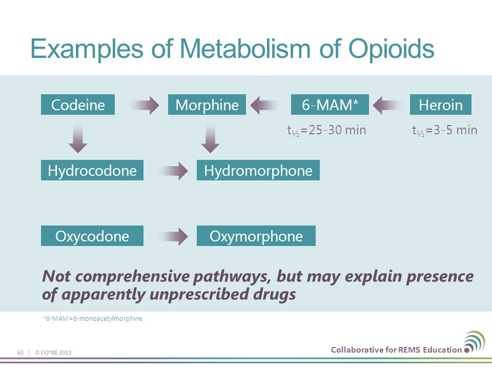 Collaborative for REMS Education Examples of Metabolism of Opioids 63 | © CO*RE 2013 CodeineMorphine6-MAM*Heroin HydrocodoneHydromorphone OxycodoneOxymorphone Not comprehensive pathways, but may explain presence of apparently unprescribed drugs *6-MAM=6-monoacetylmorphine t ½ =25-30 mint ½ =3-5 min