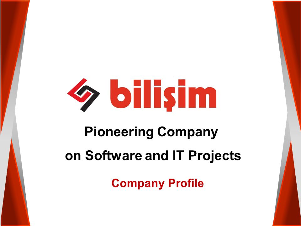 Pioneering Company on Software and IT Projects Company Profile