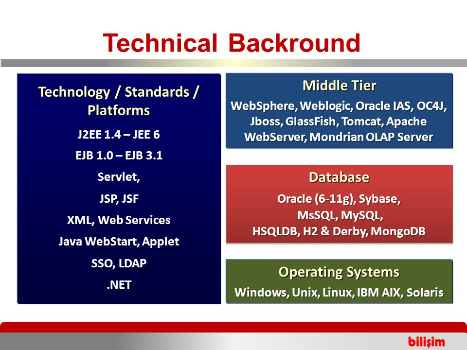 Technical Backround 2005 Middle Tier WebSphere, Weblogic, Oracle IAS, OC4J, Jboss, GlassFish, Tomcat, Apache WebServer, Mondrian OLAP Server Operating