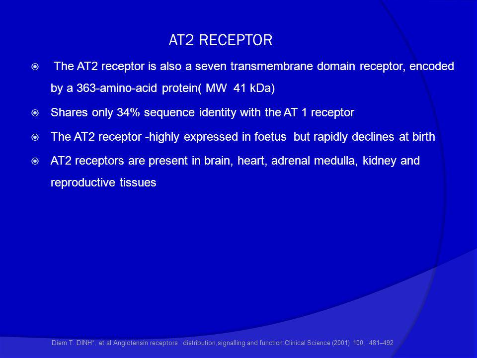 AT2 RECEPTOR  The AT2 receptor is also a seven transmembrane domain receptor, encoded by a 363-amino-acid protein( MW 41 kDa)  Shares only 34% seque