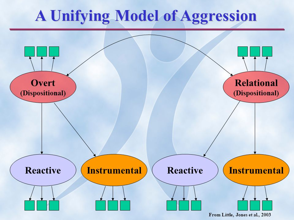 ReactiveInstrumentalReactiveInstrumental Overt (Dispositional) Relational (Dispositional) A Unifying Model of Aggression From Little, Jones et al., 2003