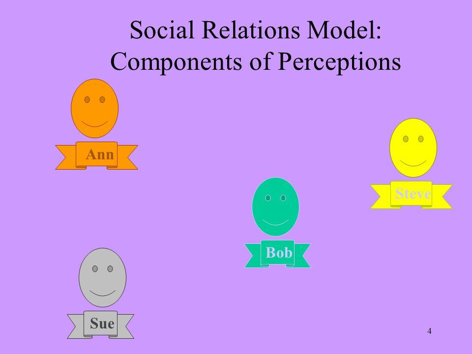5 Social Relations Model: Components of Perceptions Bob Steve Sue Ann Bob is friendly