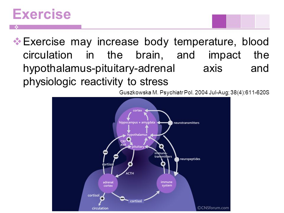 Exercise  Exercise may increase body temperature, blood circulation in the brain, and impact the hypothalamus-pituitary-adrenal axis and physiologic reactivity to stress Guszkowska M.