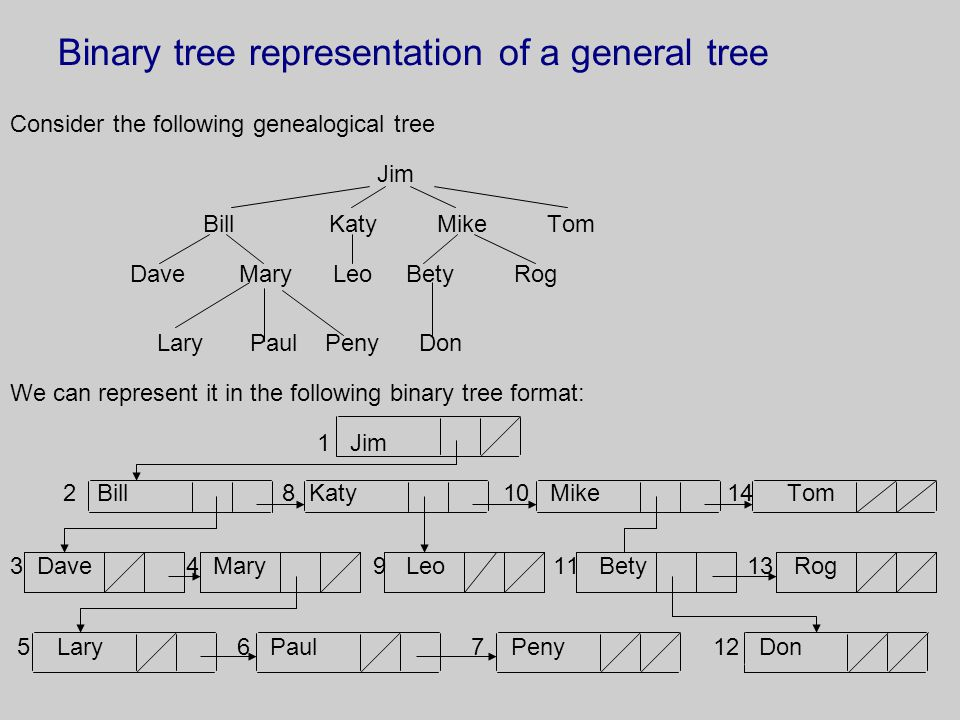 Binary tree representation of a general tree Consider the following genealogical tree Jim Bill Katy Mike Tom Dave Mary Leo Bety Rog Lary Paul Peny Don