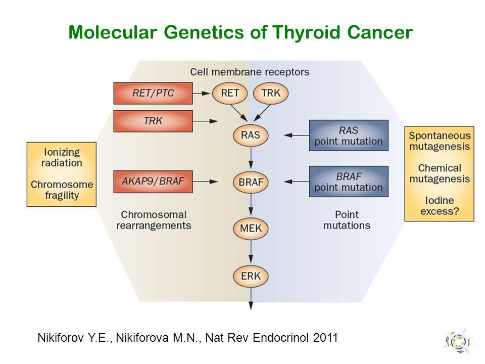 Nikiforov Y.E., Nikiforova M.N., Nat Rev Endocrinol 2011 Molecular Genetics of Thyroid Cancer
