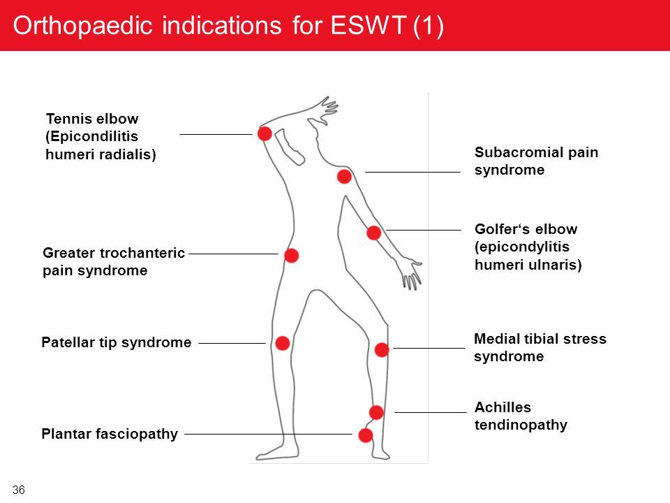 36 Subacromial pain syndrome Tennis elbow (Epicondilitis humeri radialis) Patellar tip syndrome Medial tibial stress syndrome Achilles tendinopathy Pl