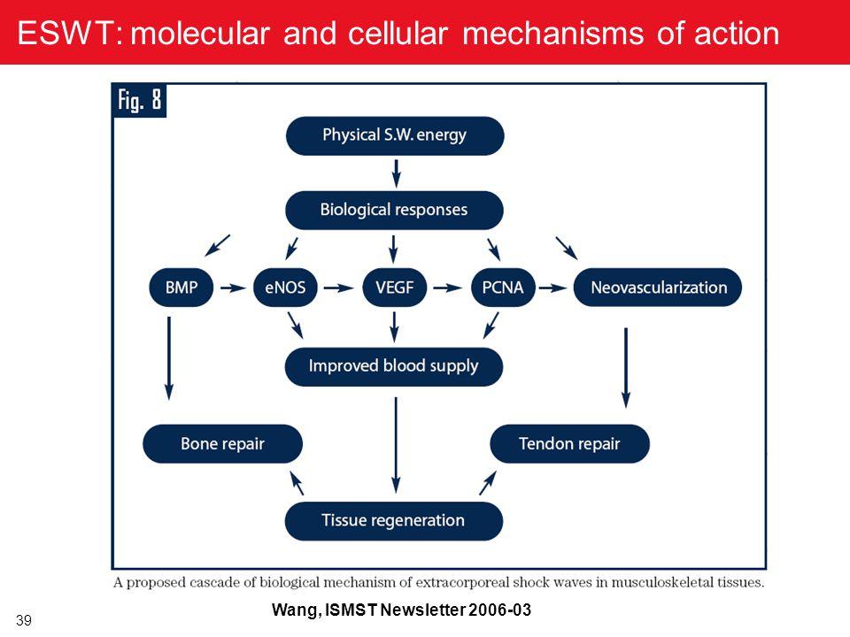 39 ESWT: molecular and cellular mechanisms of action Wang, ISMST Newsletter 2006-03