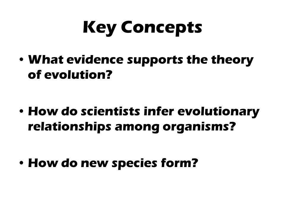 Key Concepts What evidence supports the theory of evolution.