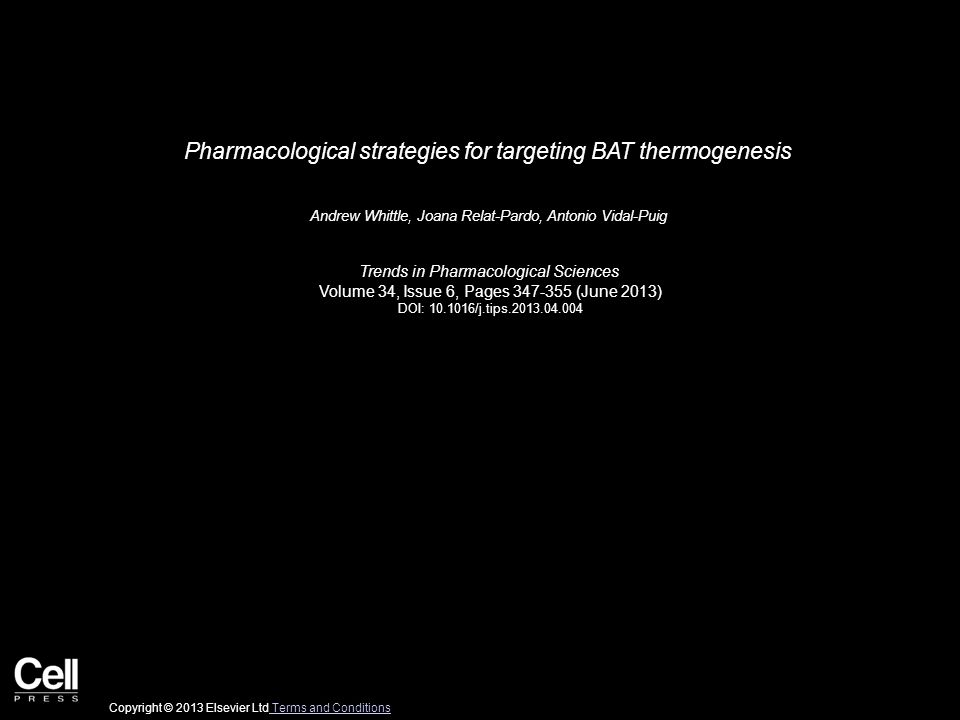 Pharmacological strategies for targeting BAT thermogenesis Andrew Whittle, Joana Relat-Pardo, Antonio Vidal-Puig Trends in Pharmacological Sciences Volume 34, Issue 6, Pages 347-355 (June 2013) DOI: 10.1016/j.tips.2013.04.004 Copyright © 2013 Elsevier Ltd Terms and Conditions Terms and Conditions