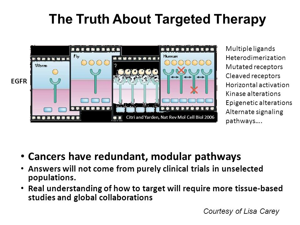 The Truth About Targeted Therapy Cancers have redundant, modular pathways Answers will not come from purely clinical trials in unselected populations.