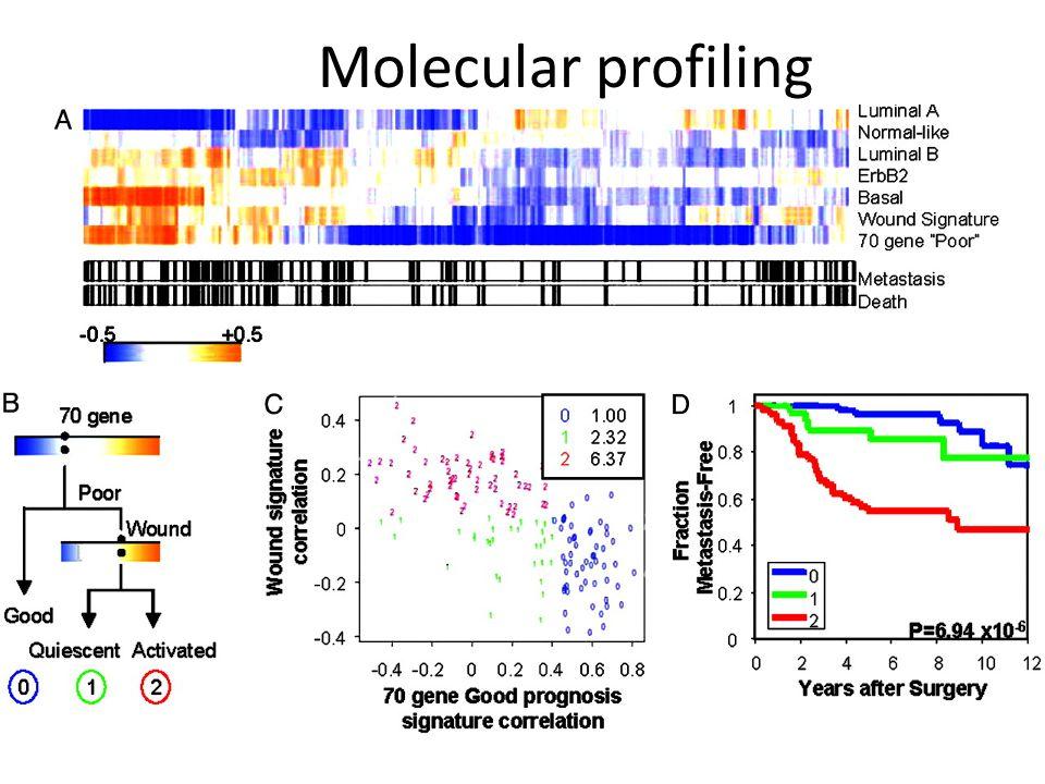 PNAS 2005 Molecular profiling