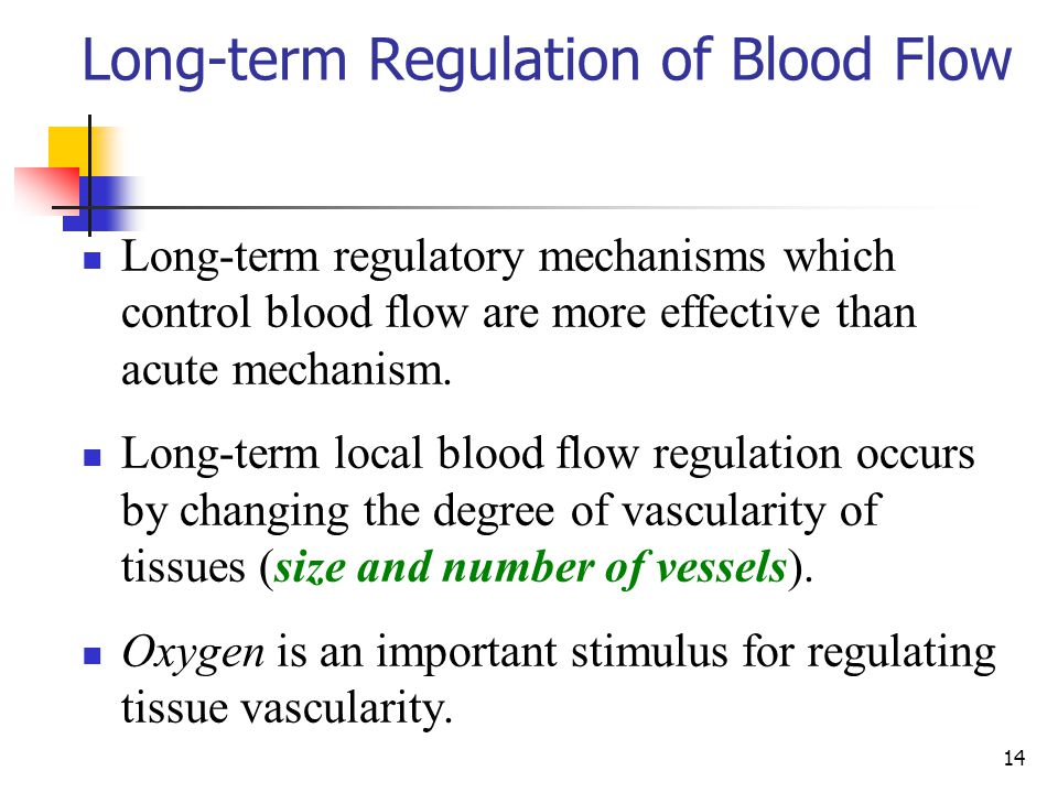 14 Long-term Regulation of Blood Flow Long-term regulatory mechanisms which control blood flow are more effective than acute mechanism. Long-term loca