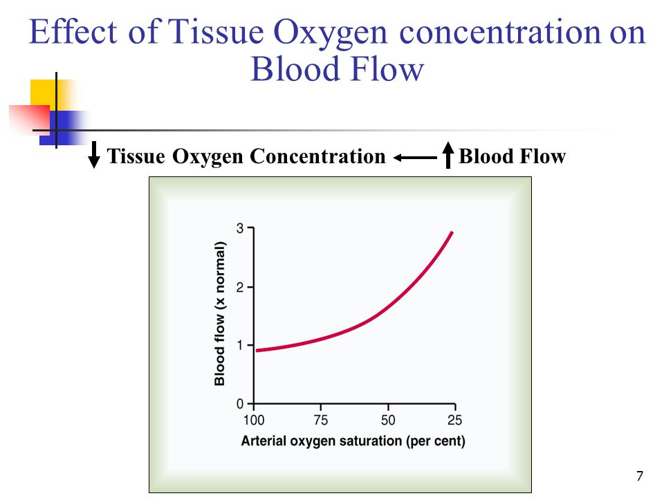 7 Effect of Tissue Oxygen concentration on Blood Flow Tissue Oxygen Concentration Blood Flow