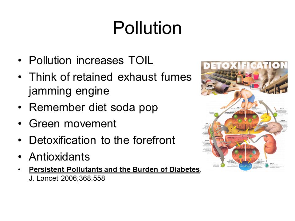 Pollution Pollution increases TOIL Think of retained exhaust fumes jamming engine Remember diet soda pop Green movement Detoxification to the forefront Antioxidants Persistent Pollutants and the Burden of Diabetes, J.