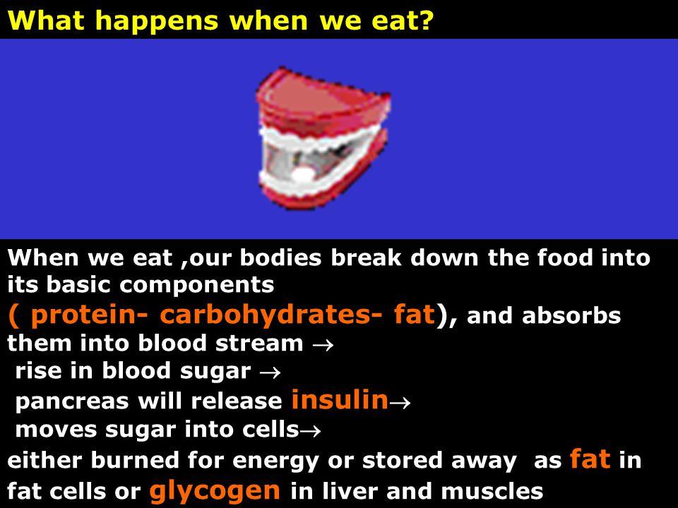 What happens when we eat.