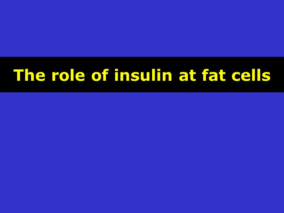 The role of insulin at fat cells