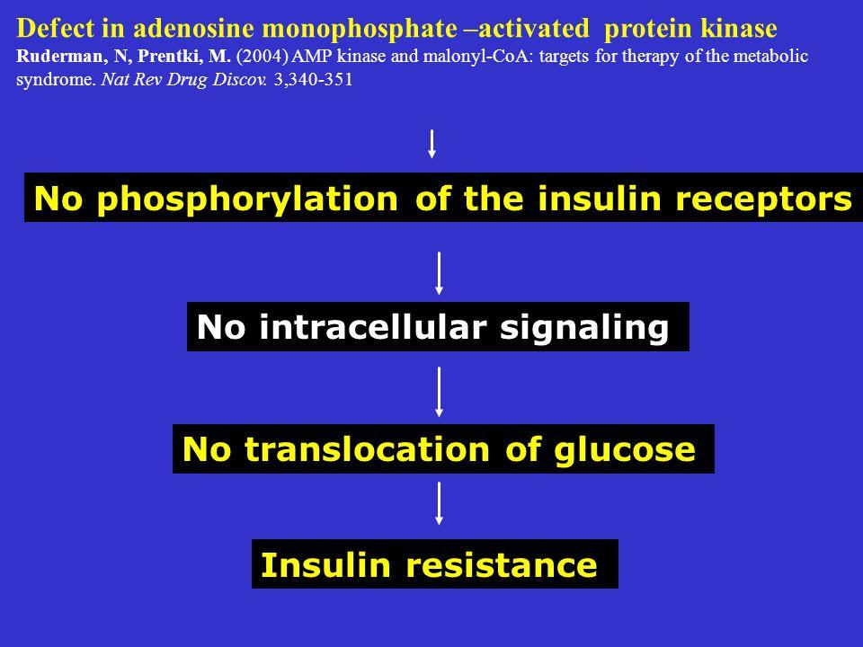 Defect in adenosine monophosphate –activated protein kinase Ruderman, N, Prentki, M.