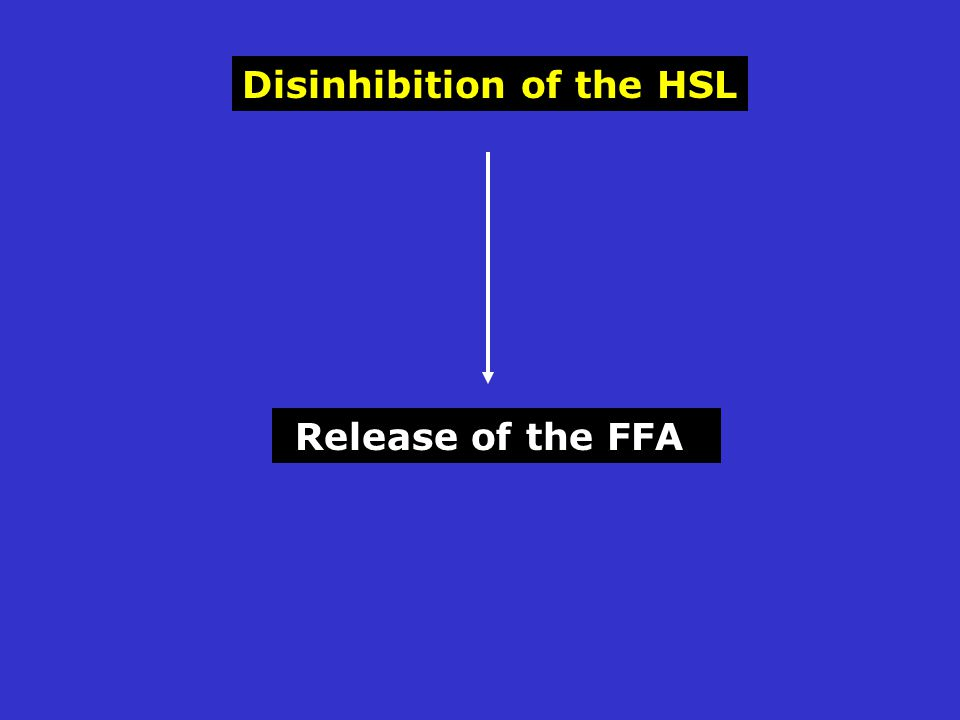 Disinhibition of the HSL Release of the FFA