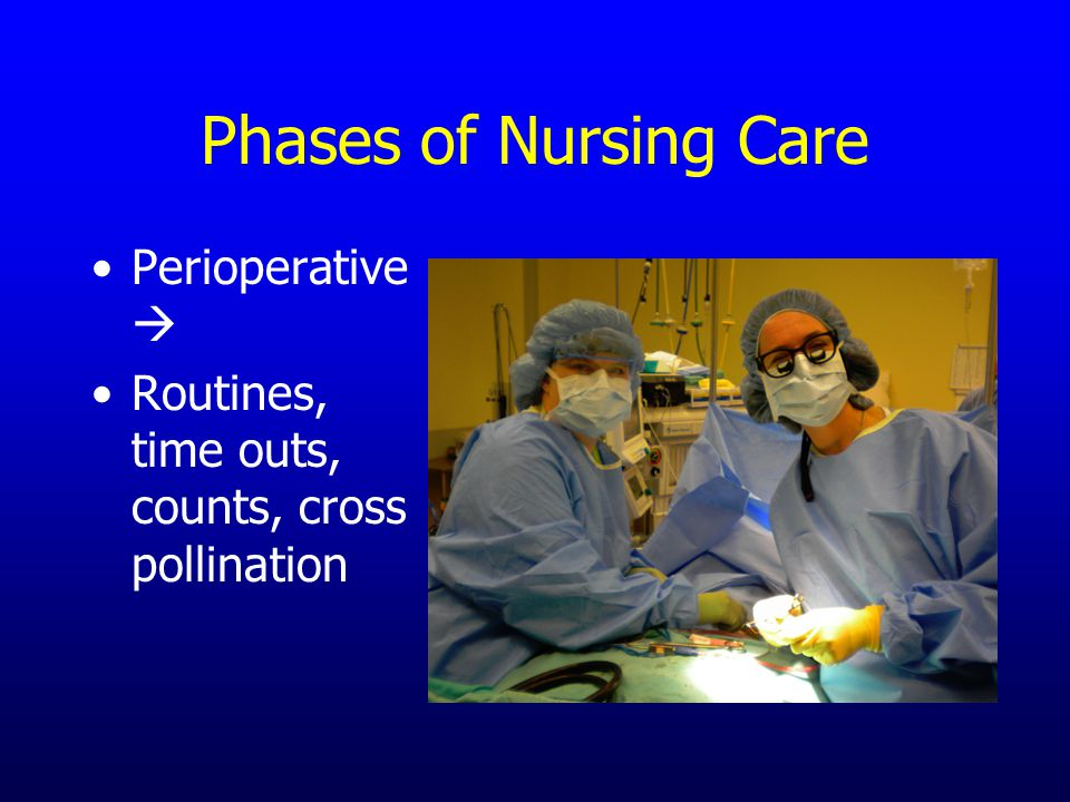 Phases of Nursing Care Perioperative  Routines, time outs, counts, cross pollination