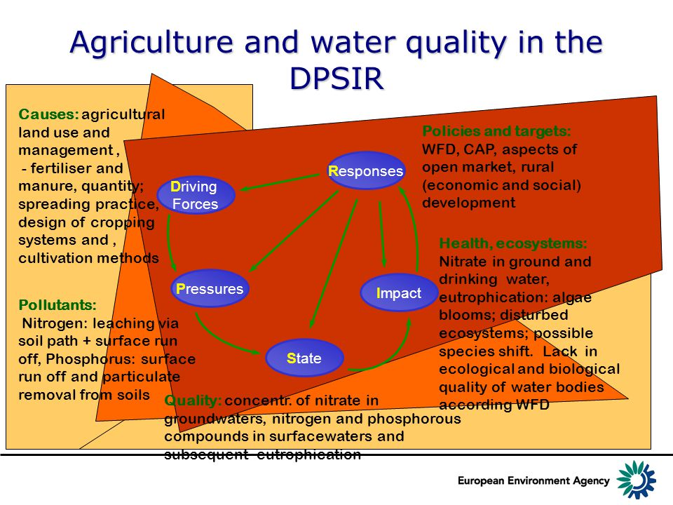 Agriculture and water quality in the DPSIR Driving Forces Pressures State Responses Impact Quality: concentr.