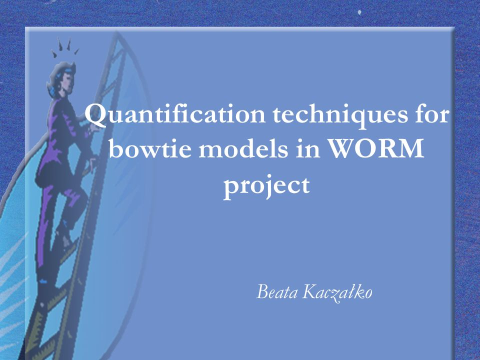 The aims of the WORM are to deliver: 25 quantified bowties for occupational risk targeted by client; a method for calculating the occupational risks; tools to enable new bowties to be built and risks calculated; software support;