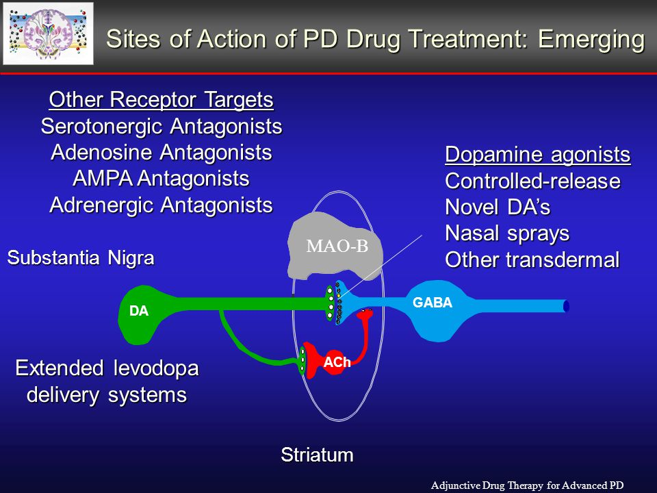 Sites of Action of PD Drug Treatment: Emerging Adjunctive Drug Therapy for Advanced PD DA GABA ACh Striatum Substantia Nigra Other Receptor Targets Serotonergic Antagonists Adenosine Antagonists AMPA Antagonists Adrenergic Antagonists Dopamine agonists Controlled-release Novel DA's Nasal sprays Other transdermal MAO-B Extended levodopa delivery systems