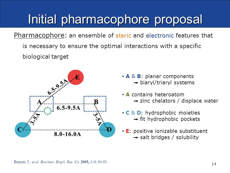 Initial pharmacophore proposal stericelectronic Pharmacophore: an ensemble of steric and electronic features that is necessary to ensure the optimal interactions with a specific biological target Burnett, J.; et al.