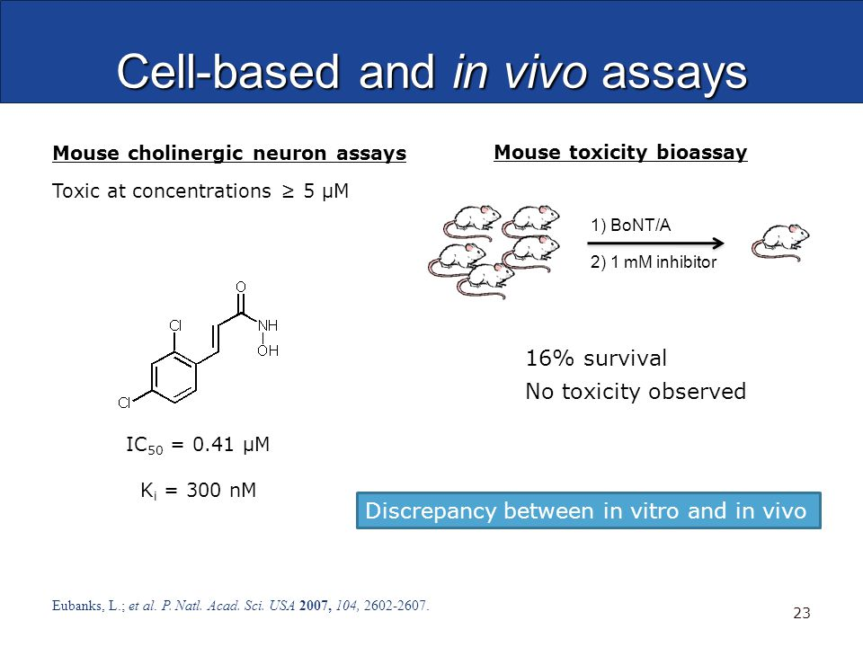 Cell-based and in vivo assays Eubanks, L.; et al. P.