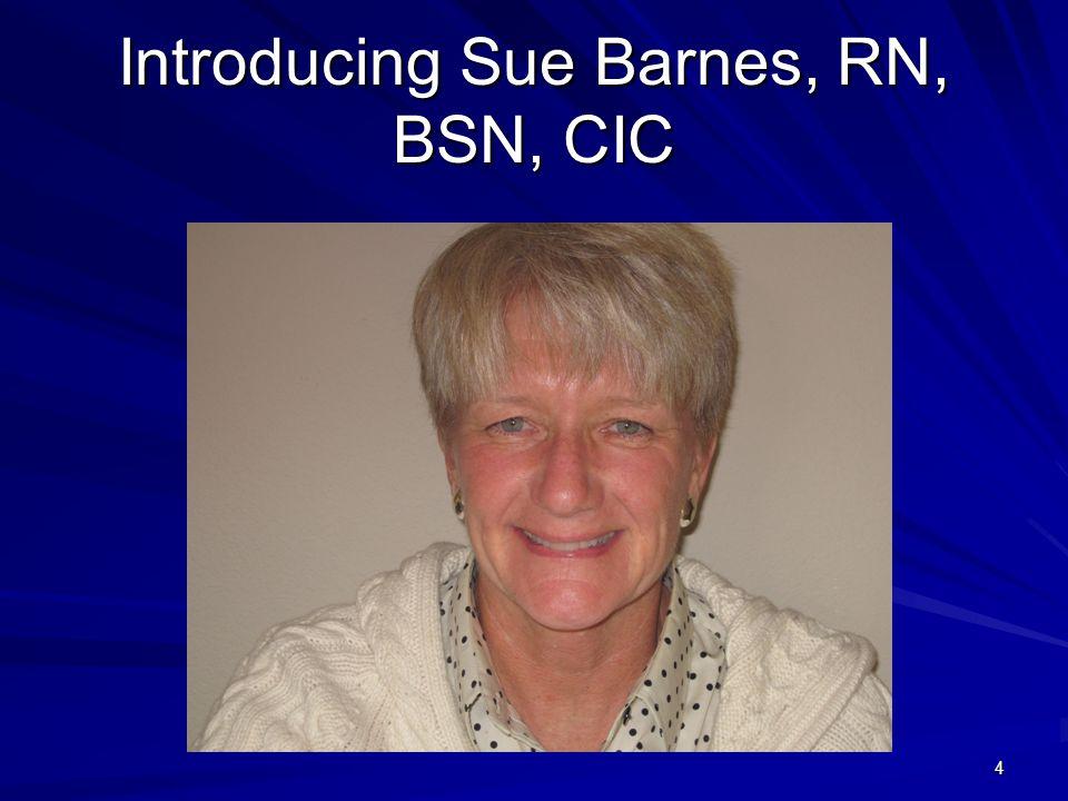 Introducing Sue Barnes, RN, BSN, CIC 4