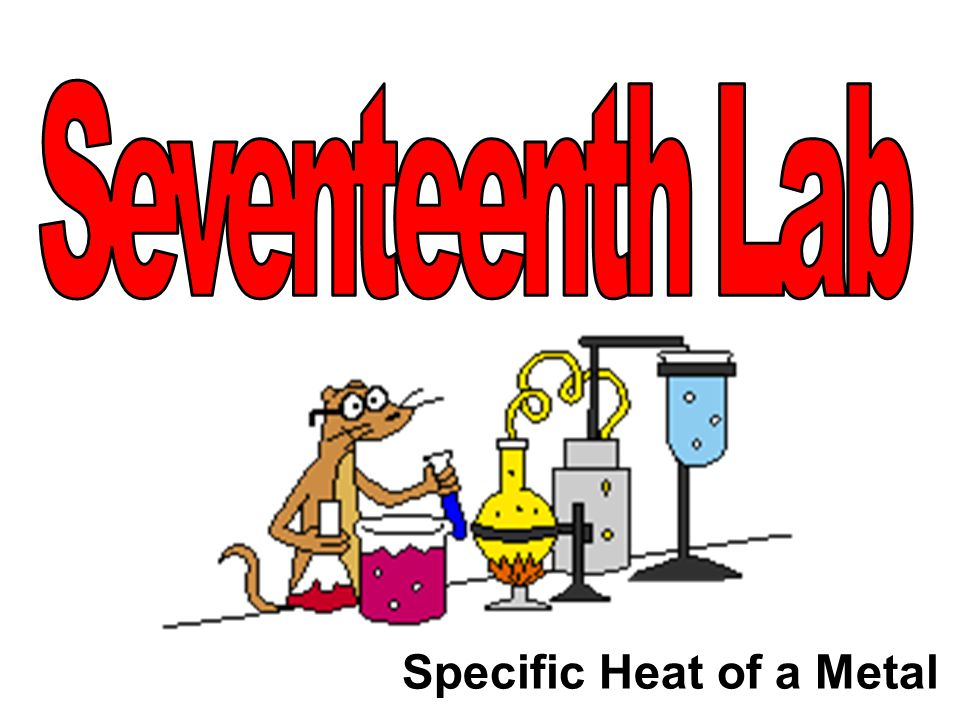 Specific Heat of a Metal