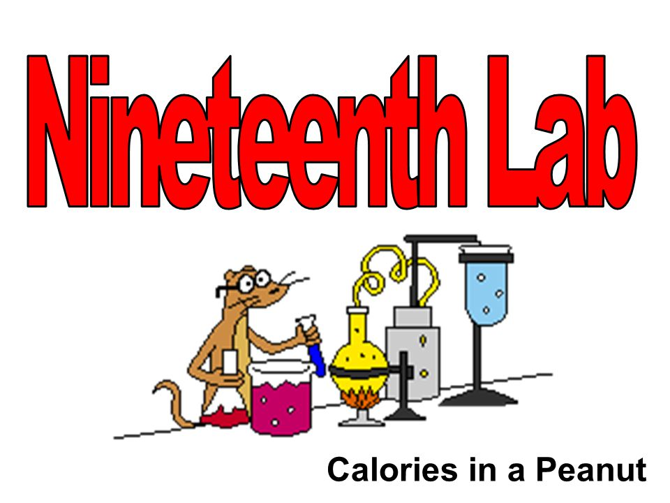 Calories in a Peanut