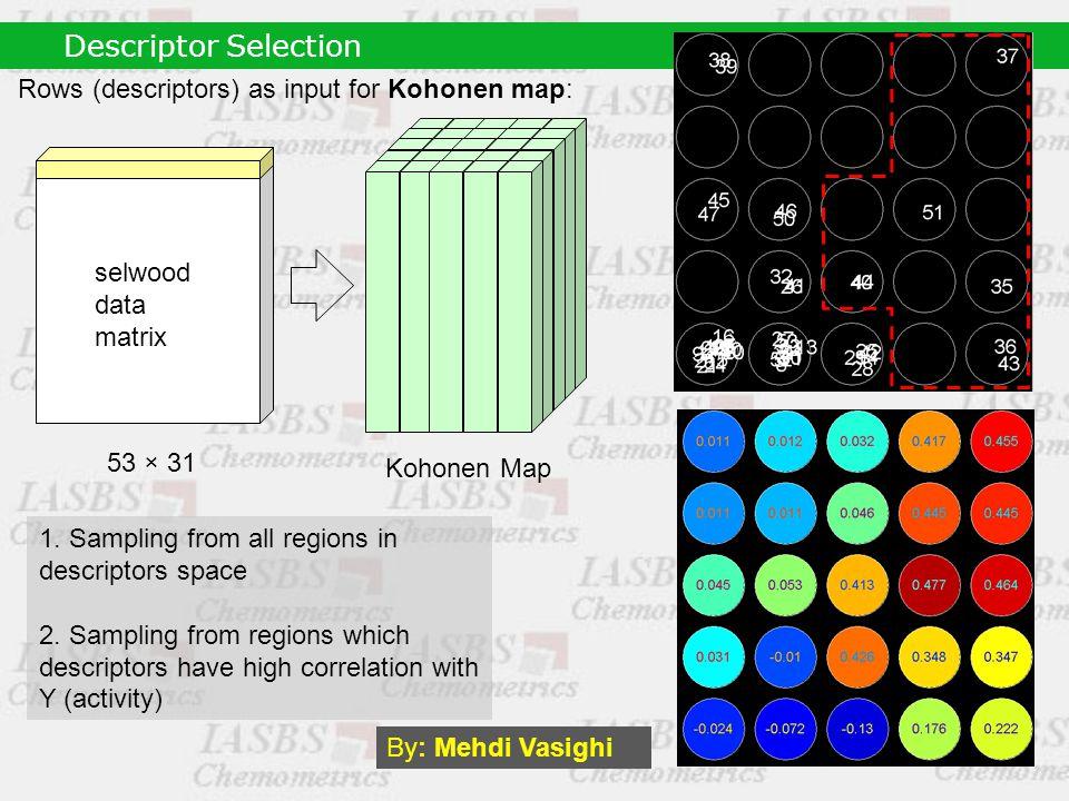 Kohonen Map 53 × 31 Rows (descriptors) as input for Kohonen map: 1.