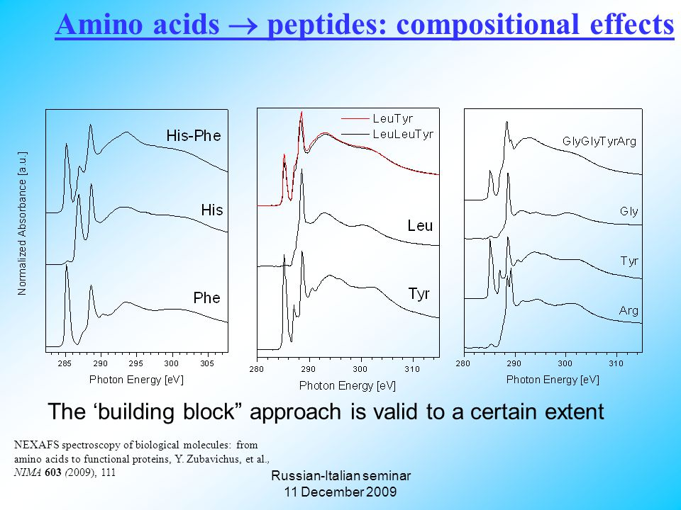 Russian-Italian seminar 11 December 2009 Amino acids  peptides: compositional effects The 'building block approach is valid to a certain extent NEXAFS spectroscopy of biological molecules: from amino acids to functional proteins, Y.