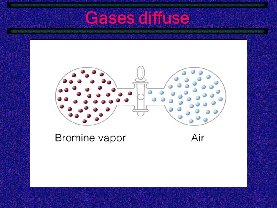 Gases diffuse  Gases can move through each other rapidly.