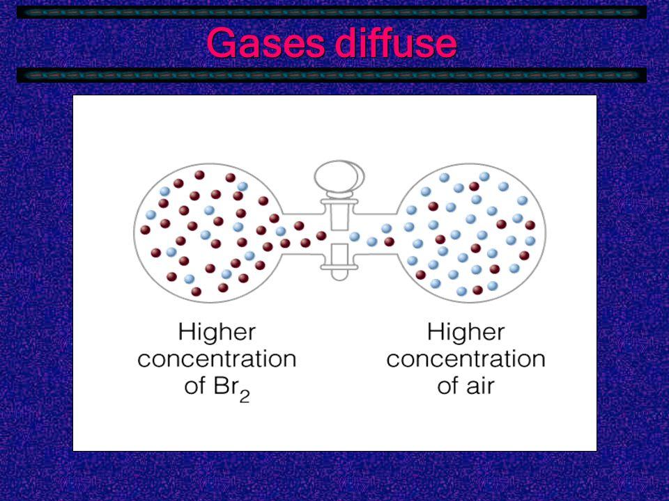 Gases diffuse