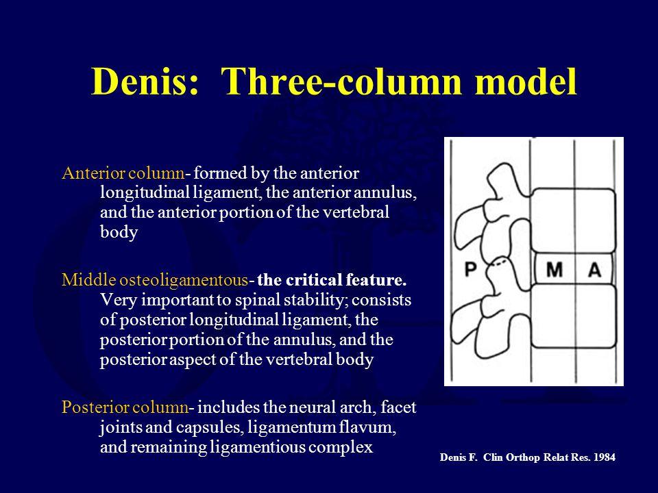 Denis: Three-column model Anterior column- formed by the anterior longitudinal ligament, the anterior annulus, and the anterior portion of the vertebr