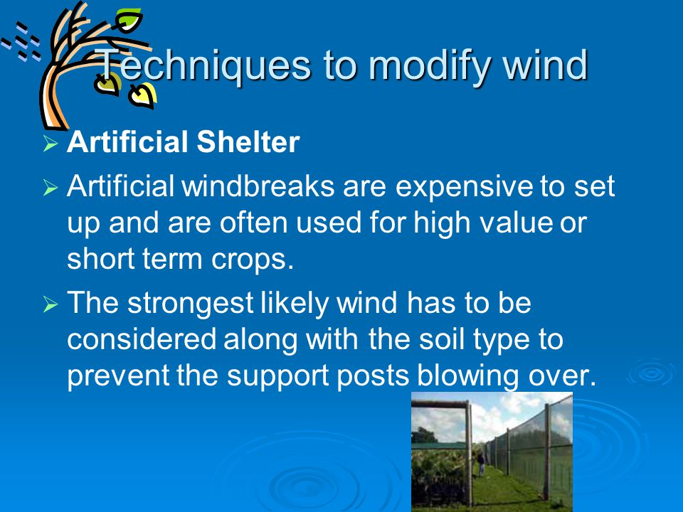Techniques to modify wind   Artificial Shelter   Artificial windbreaks are expensive to set up and are often used for high value or short term cro
