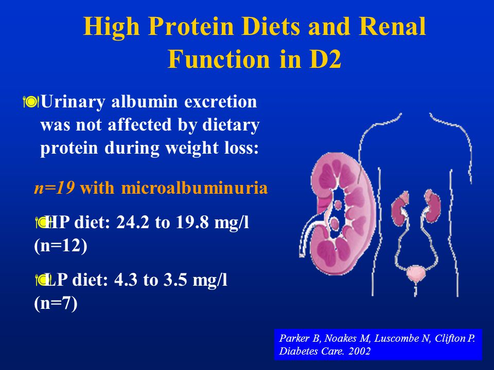 High Protein Diets and Renal Function in D2  Urinary albumin excretion was not affected by dietary protein during weight loss: n=19 with microalbumin