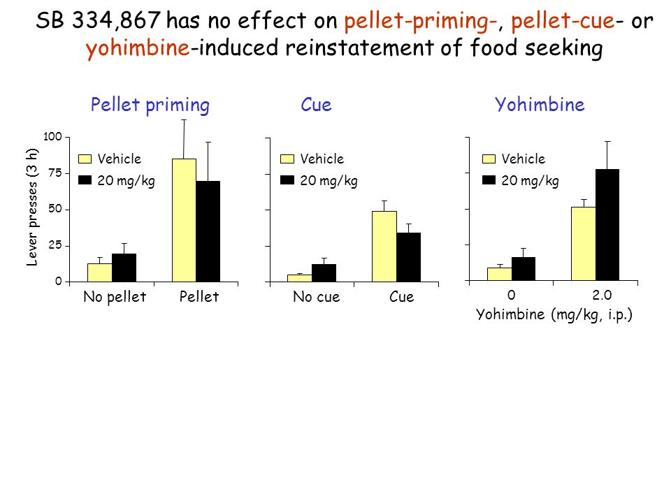 SB 334,867 has no effect on pellet-priming-, pellet-cue- or yohimbine-induced reinstatement of food seeking Pellet priming 0 25 50 75 100 No pellet Pe