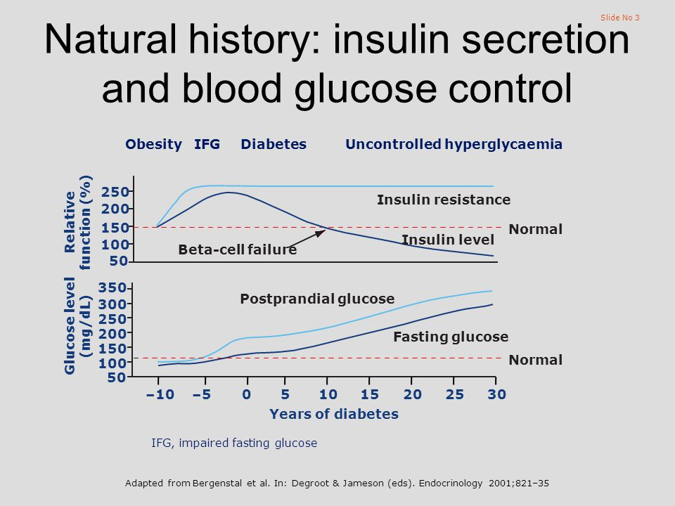 Slide No 3 Natural history: insulin secretion and blood glucose control IFG, impaired fasting glucose 350 300 250 200 150 100 50 Postprandial glucose Fasting glucose ObesityIFGDiabetesUncontrolled hyperglycaemia 250 200 150 100 50 Insulin resistance Insulin level Years of diabetes –102520151050–530 Beta-cell failure Glucose level (mg/dL) Relative function (%) Normal Adapted from Bergenstal et al.
