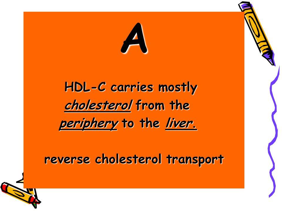 A HDL-C carries mostly HDL-C carries mostly cholesterol from the cholesterol from the periphery to the liver. periphery to the liver. reverse choleste
