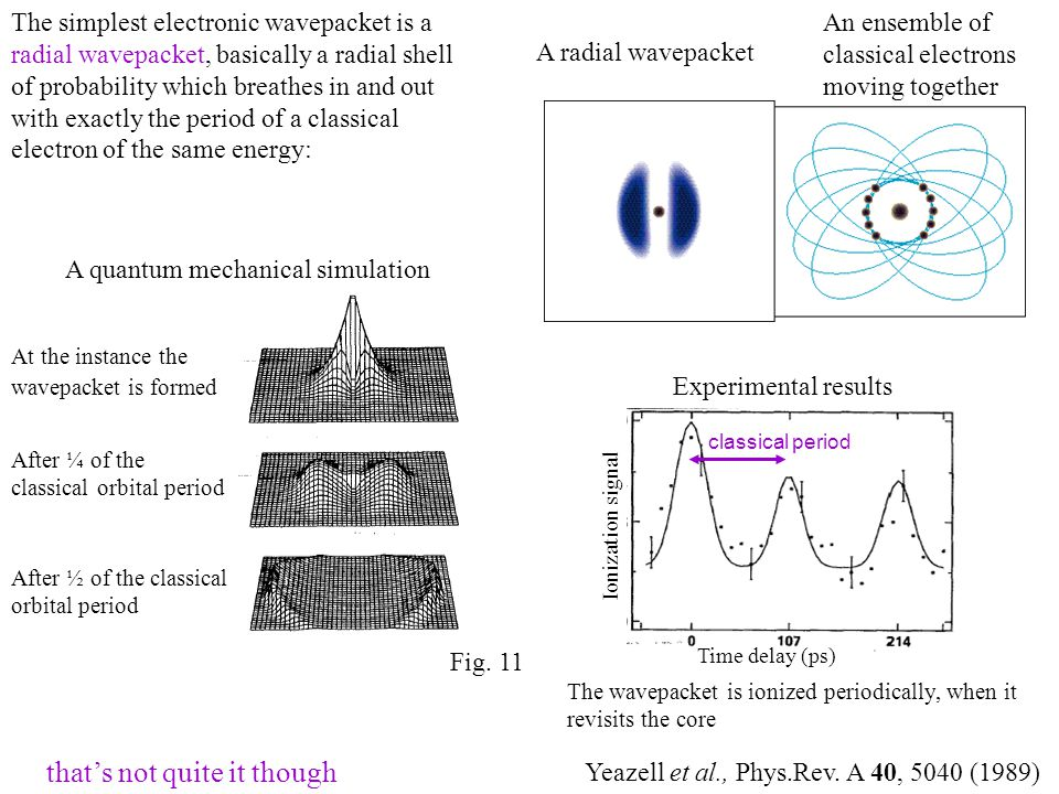 The simplest electronic wavepacket is a radial wavepacket, basically a radial shell of probability which breathes in and out with exactly the period of a classical electron of the same energy: A radial wavepacket An ensemble of classical electrons moving together A quantum mechanical simulation At the instance the wavepacket is formed After ¼ of the classical orbital period After ½ of the classical orbital period Time delay (ps) Ionization signal Experimental results The wavepacket is ionized periodically, when it revisits the core Yeazell et al., Phys.Rev.