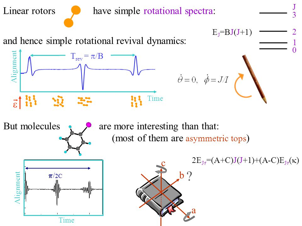 E J =BJ(J+1) 3 2 1 0 J 2E J  =(A+C)J(J+1)+(A-C)E J  (  ) a b c ? Linear rotors have simple rotational spectra: and hence simple rotational revival