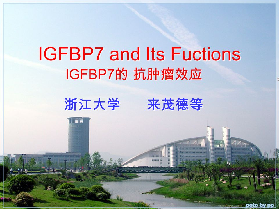 IGFBP7 and Its Fuctions 浙江大学 来茂德等 IGFBP7 的 抗肿瘤效应 IGFBP7 的 抗肿瘤效应