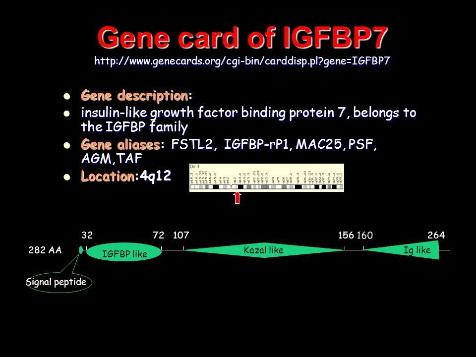 Gene card of IGFBP7 http://www.genecards.org/cgi-bin/carddisp.pl gene=IGFBP7 Gene description: Gene description: insulin-like growth factor binding protein 7, belongs to the IGFBP family insulin-like growth factor binding protein 7, belongs to the IGFBP family Gene aliases: FSTL2, IGFBP-rP1, MAC25, PSF, AGM,TAF Gene aliases: FSTL2, IGFBP-rP1, MAC25, PSF, AGM,TAF Location:4q12 Location:4q12 282 AA 3272107156 160 264 IGFBP likeKazal like Ig like Signal peptide