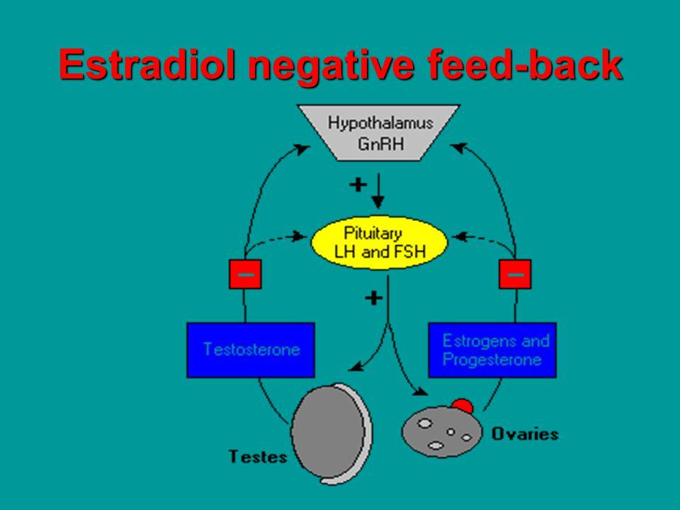 Serum levels Short protocol Long protocol E2E2 idemIdem D4 D4 ++++ depression ++++ Pregnancy rate/cicle9.2% 16.